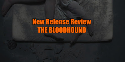 the bloodhound review