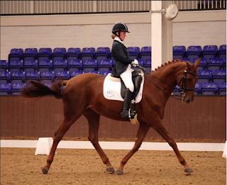 dressage horse, erin orford, dressage competition, bury farm,