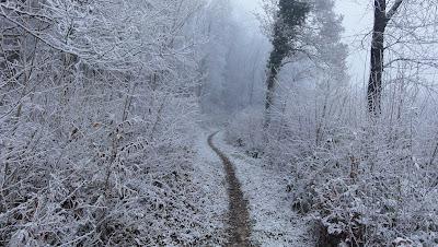 Trail nach Oensingen