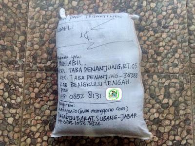 Benih padi yang dibeli   MUHABIL Bengkulu Tengah, Bengkulu.  (Setelah packing karung).
