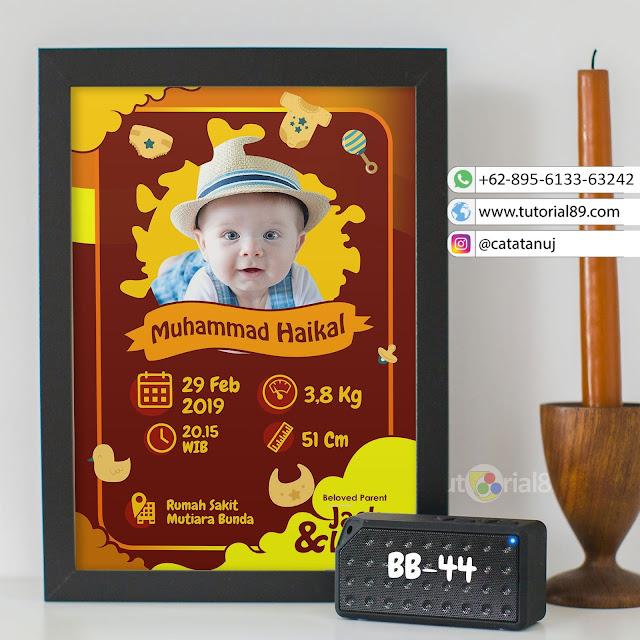 Biodata Bayi Costume Unik Kode BB44 | Coklat Tua