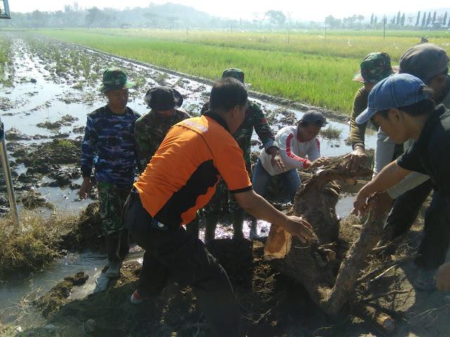 Kiprah TNI Polri Dan Warga Pada TMMD Reg 105 Kodim Klaten