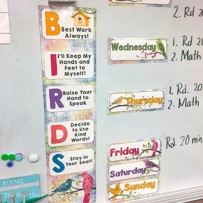 Watercolor Bird Theme Rules