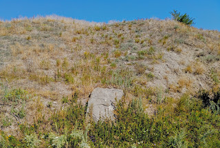 Андроновка, Каменка. Отработанный карьер