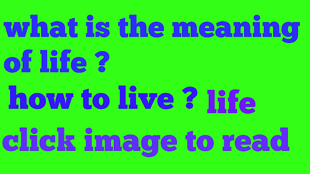What is the meaning of life? Life ,how to live