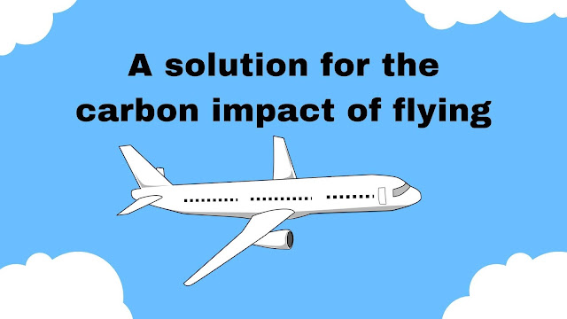 carbon impact of flying