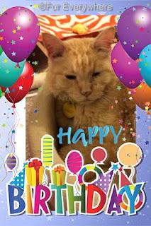 Happy Birthday, Carmine!
