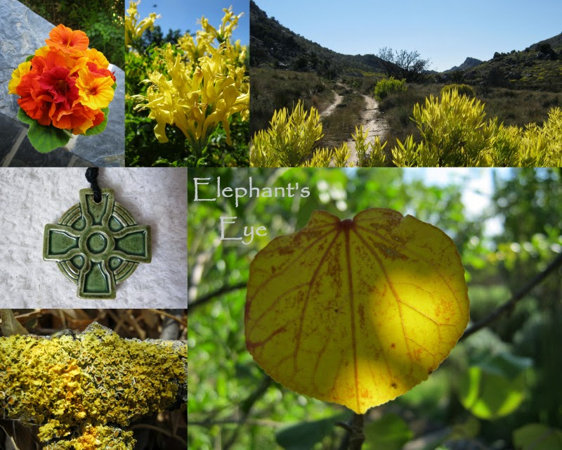 Summer Gold Nasturtiums, Tecoma capensis, Leucadendron Celtic cross from my mother, Hibiscus tiliaceus golden lichen