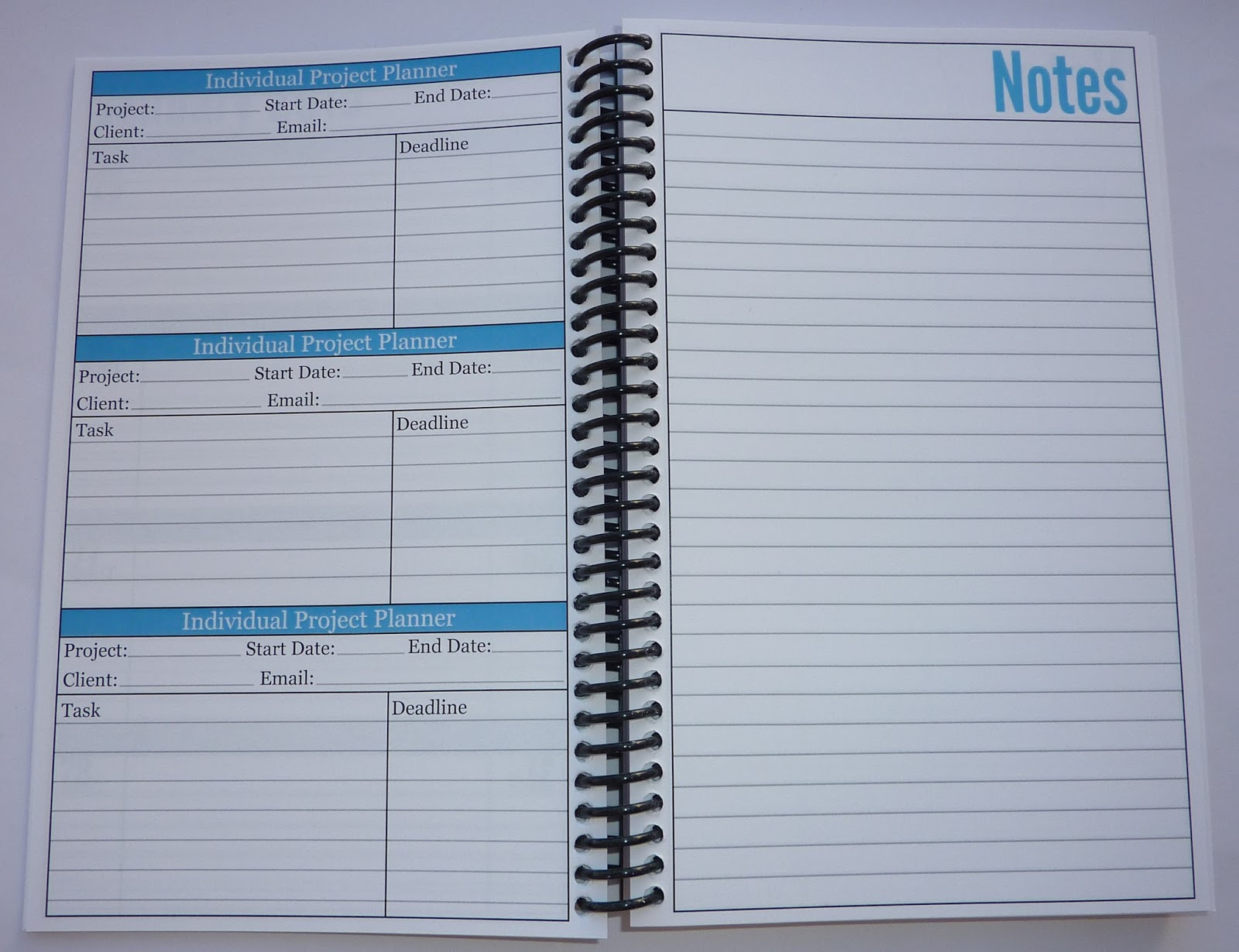 Plannerisms 2016 Essential Daily Planner by Productive Flourishing – Project Planners