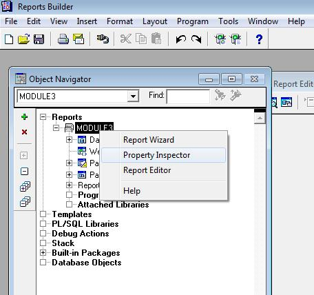 Oracle Reports Tutorials ~ Symrich