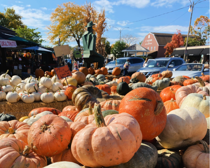 pumpkins at kirkwood farmer's market