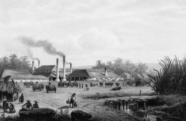 Ilustrasi pabrik gula zaman tanam paksa