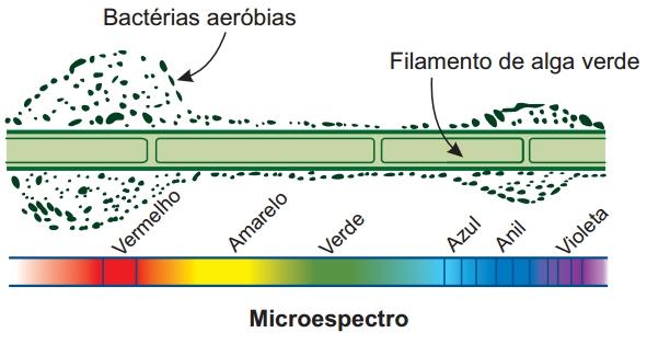 Microespectro