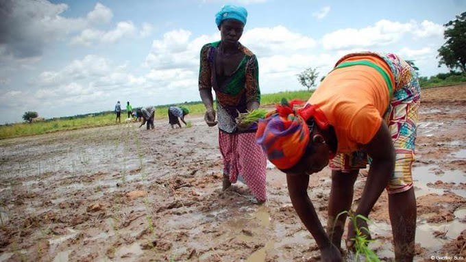 Women struggle to secure land rights in Ghana
