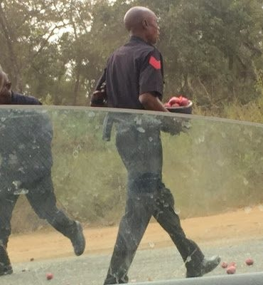 Policemen abandon duty post, fill helmets with onions from moving truck in Kogi [PHOTOS]