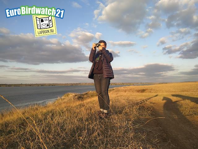 учет птиц на озере Кызыл Яр, Крым, Сакский район
