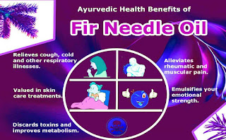 fir tree uses and benefits