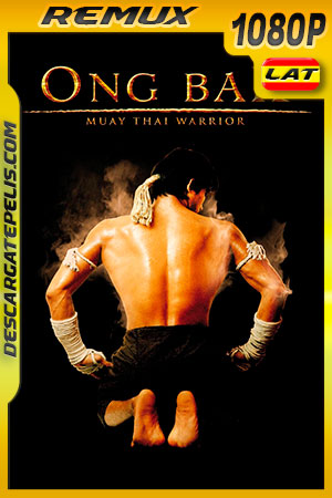 Ong-Bak: El guerrero Muay Thai (2003) 1080p BDRemux Latino – Ingles