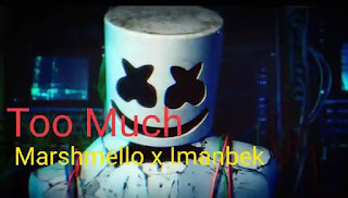 Marshmello x Imanbek - Too Much Lyrics