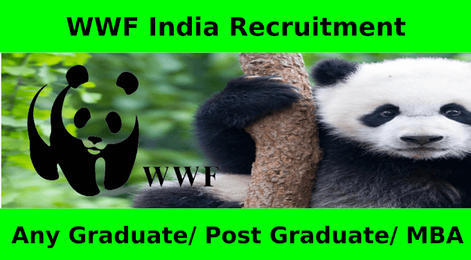 World Wide Fund India Recruitment
