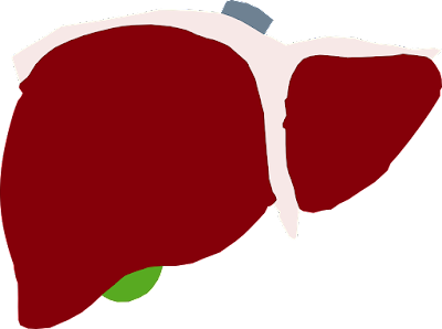 Powerful natural home remedies for liver disease