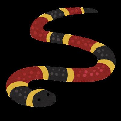 サンゴヘビのイラスト