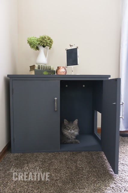 repurpose cabinet for cat litter