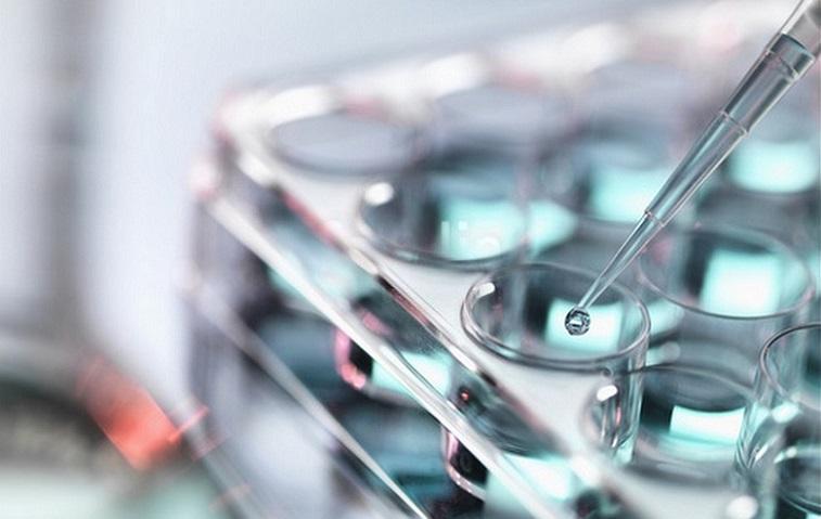 Auris Medical reanuda inscripción en el ensayo clínico Fase 3 de ...