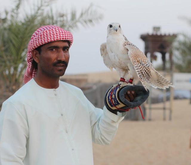 السياحة في دولة الإمارات