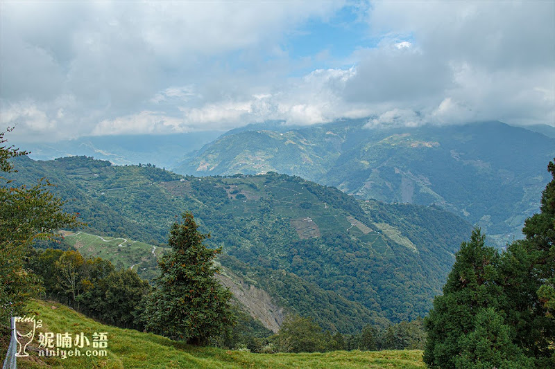 【清境農場景點】高空景觀步道。全台最高天空步道在清境