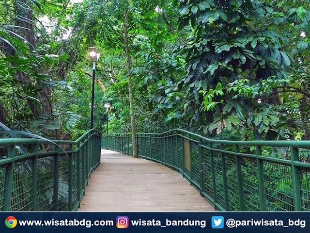 Forest Walk Babakan Siliwangi Segera Dibuka dengan Menerapkan Protokol Kesehatan