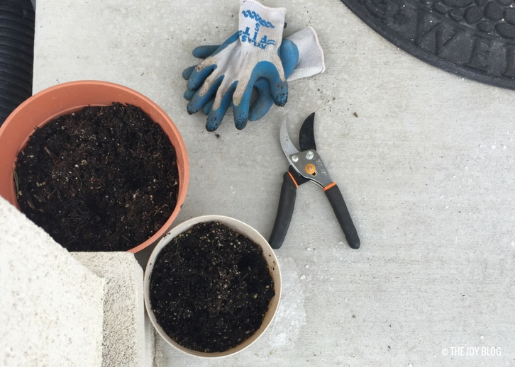 Plant pots and garden gloves // www.thejoyblog.net