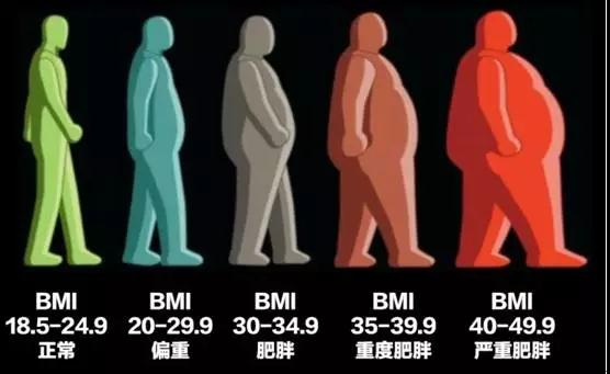 不復胖, 台北有效減肥, 有效減肥, 美麗好診所, 專業減重, 減肥, 減脂, 減肥門診, 減肥推薦, 減肥診所, 減肥診所推薦, 減肥藥, 減重門診, 男性減重, 三高