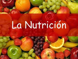 http://ntic.educacion.es/w3//eos/MaterialesEducativos/mem2001/nutricion/program/apli/avf.html