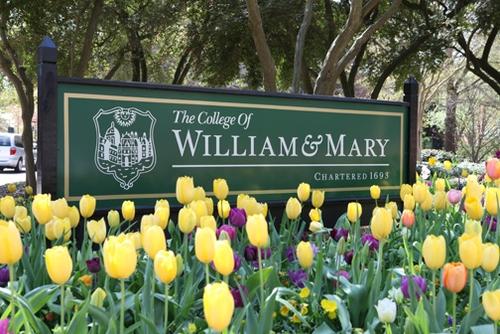 college of william and mary supplement essay    essay   gavaragenews