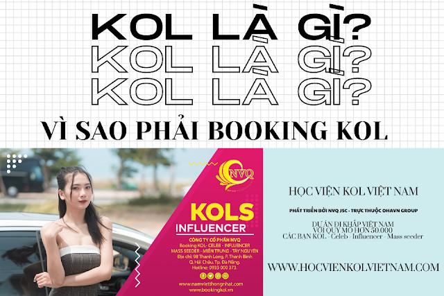 Biễu mẫu booking kol Việt Nam