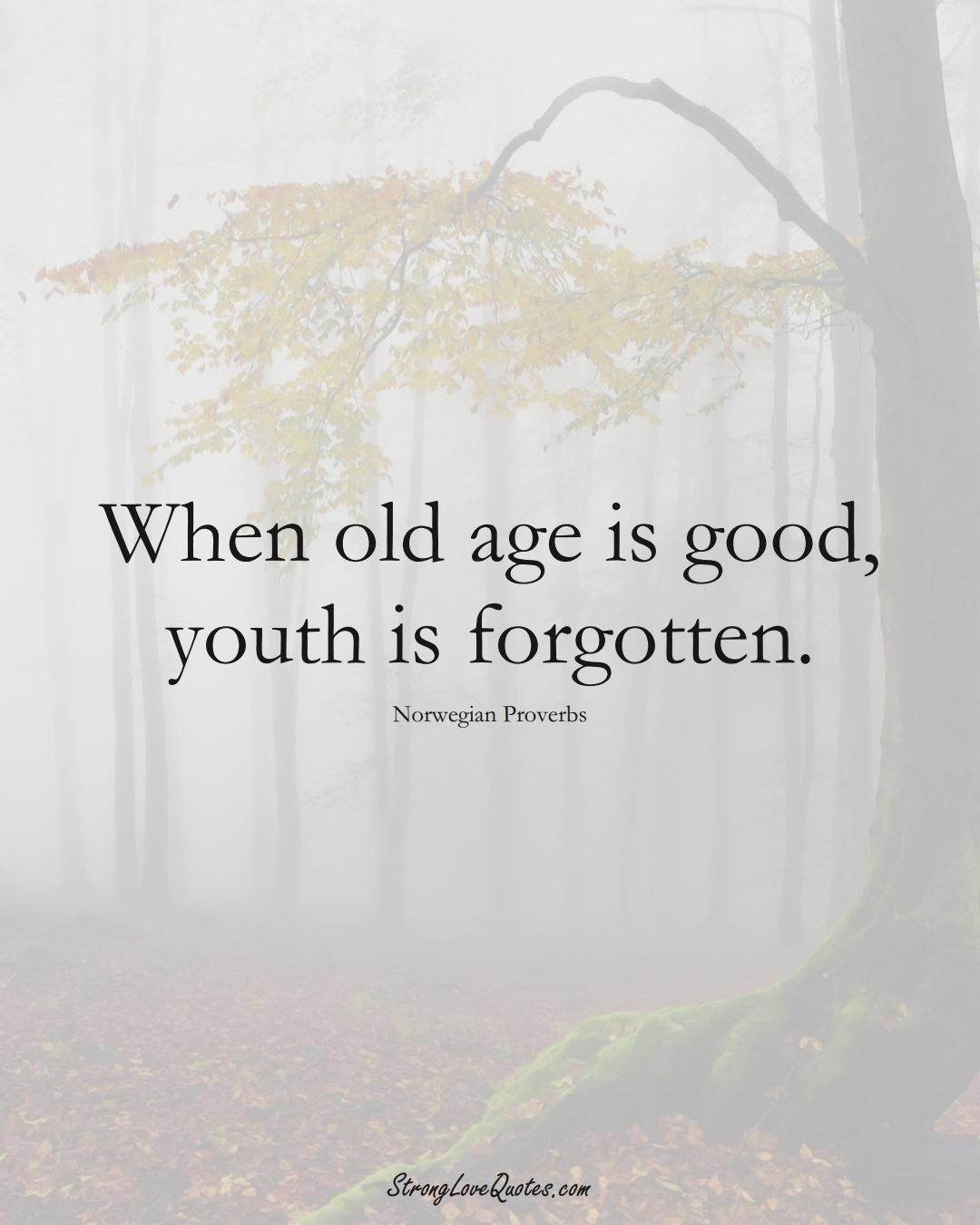 When old age is good, youth is forgotten. (Norwegian Sayings);  #EuropeanSayings
