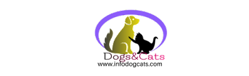 infodogcats