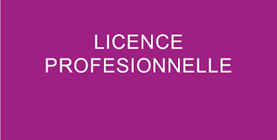 Avis aux candidats aspirant au diplôme de Licence professionnelle : Gestion et Médiation Sociales