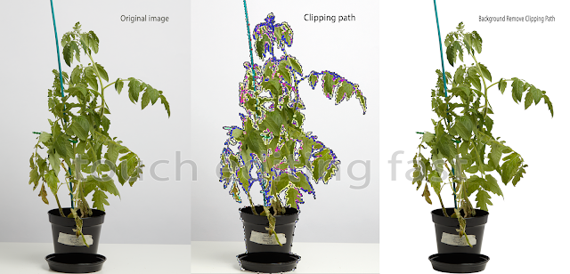 Large clipping path