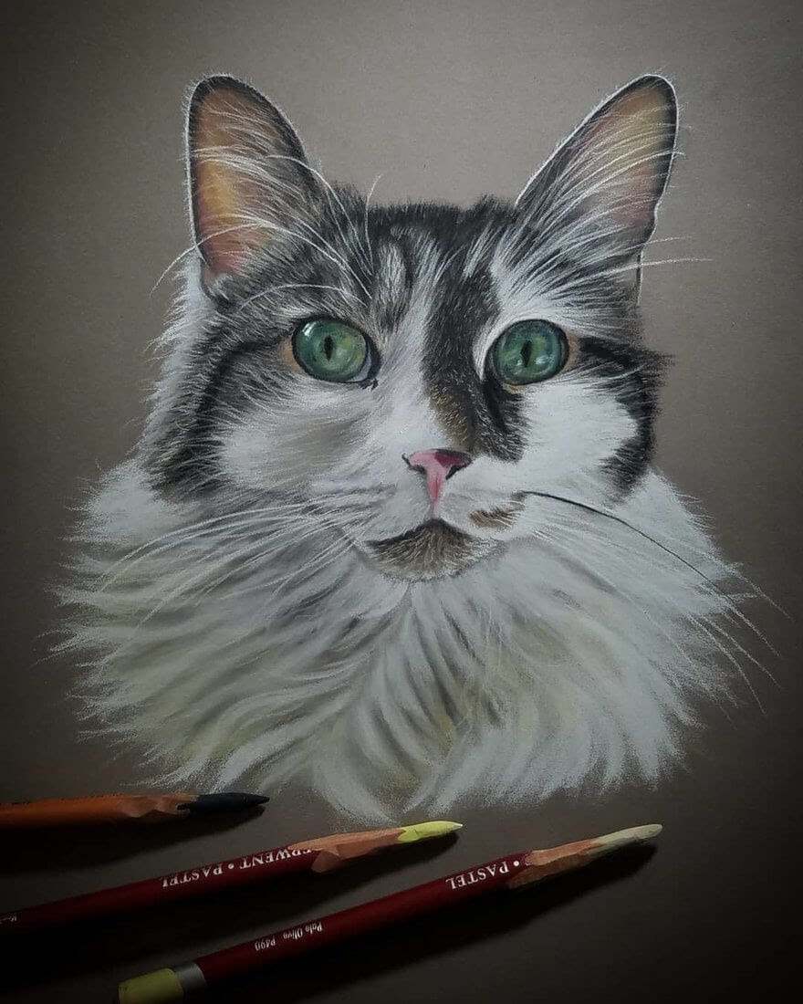 07-Cat-Rene-Lopez-Animal-Pencil-and-Pastel-Portrait-Drawings-www-designstack-co