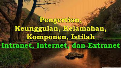 Pengertian, Keunggulan, Kelamahan, Komponen, Istilah Intranet, Internet, dan Extranet