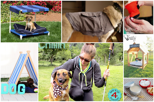 Collage of summer DIY ideas for dogs