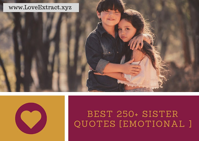 Best 250+ Sister Quotes [Emotional ]