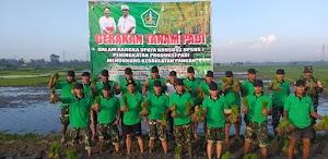 Dukung Kedaulatan Pangan, Kodim 1619/Tabanan Turun ke Sawah