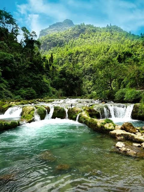 Chinese nature