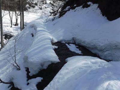 雪が途切れてスキーでは歩けなくなった平沢林道。