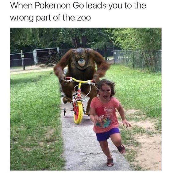 Harambe Meme 8