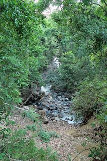 Rio Coco, Puriscal