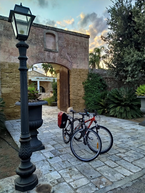 carbon road bike rental in mesagne brindisi cycling apulia puglia southern italy shop